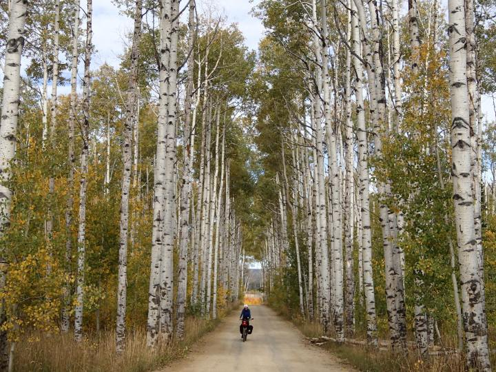 And to cycle down the famous Aspen Alley