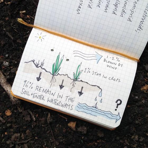 neonicotinoids sketch