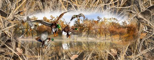 Mallards Tallgrass Duck Camo Full Size Tailgate Wrap