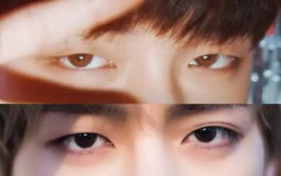 テテとヨンジュンの目