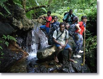 Wrecks to Rainforest Tours, Santo Vanuatu
