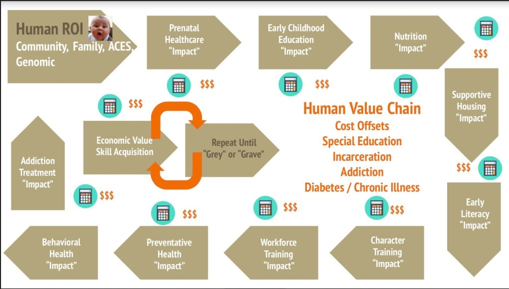 Human Capital Value Chain