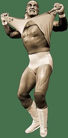 Hulk Hogan - wrestlingbiographies.com