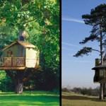 美麗的亞馬遜樹屋