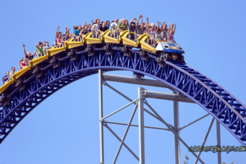 Roller Coasters Could Cure Your Kidney Stones?