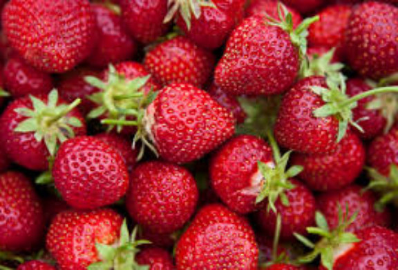 N.C. strawberry growers expect second wave of crop