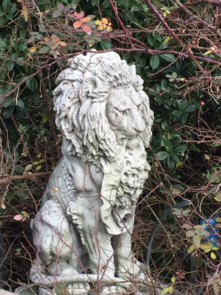 Venetian lion hidden in the bushes.