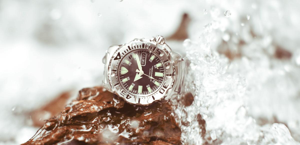 Which Watch Next Dive Watch