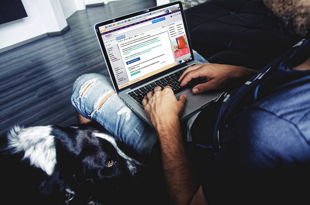 Image, Dog looking up at a person using a laptop.