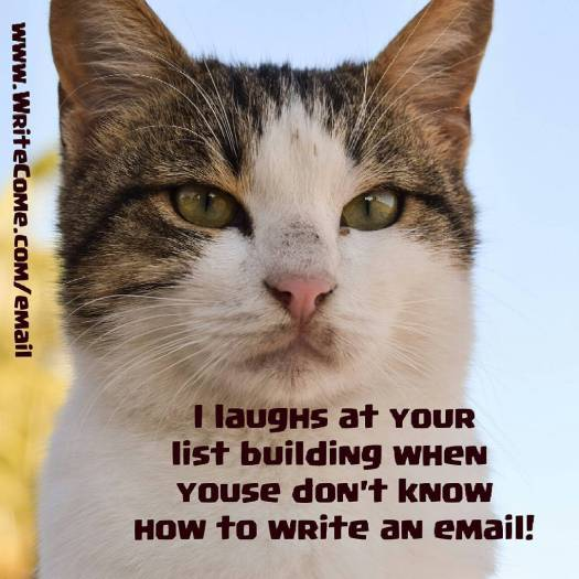 email memes
