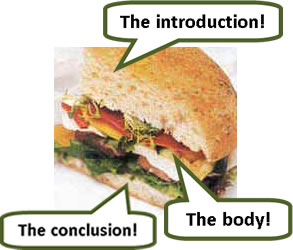 The different parts of the essay are like the parts of a sandwich or a burger...