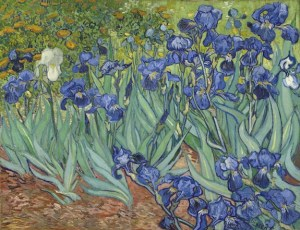 VanGogh irises