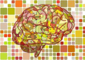 brain-951871_1280