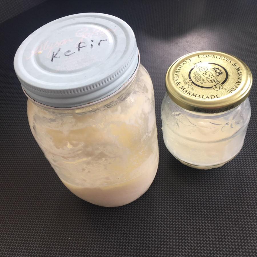 home made kefir in jars