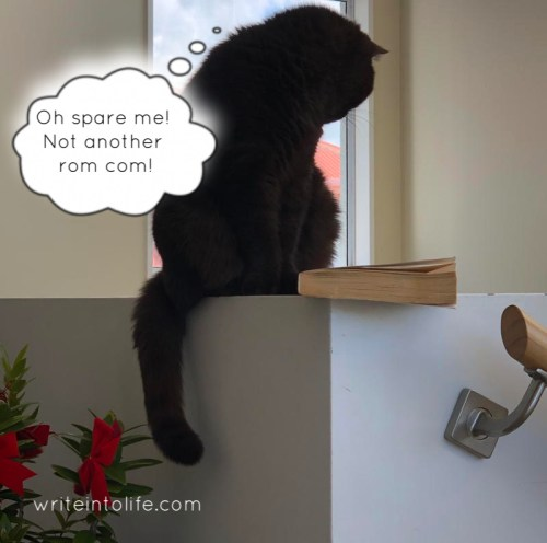 Cat glaring at a book. Oh spare me! Not another rom com! she says. writeintolife.com