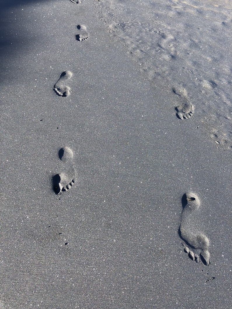 footprints in sand, water washing over them