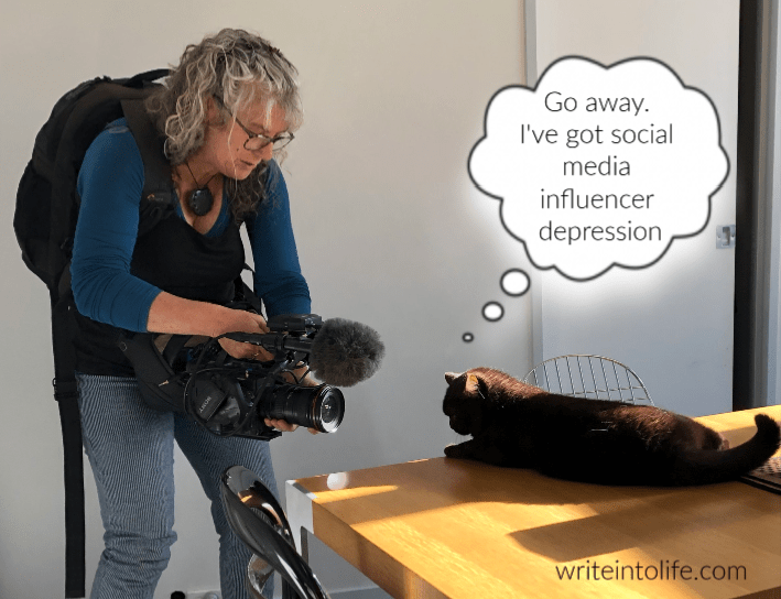 Celebrity cat being filmed. Thinks, Go away. I've got social media influencer depression.
