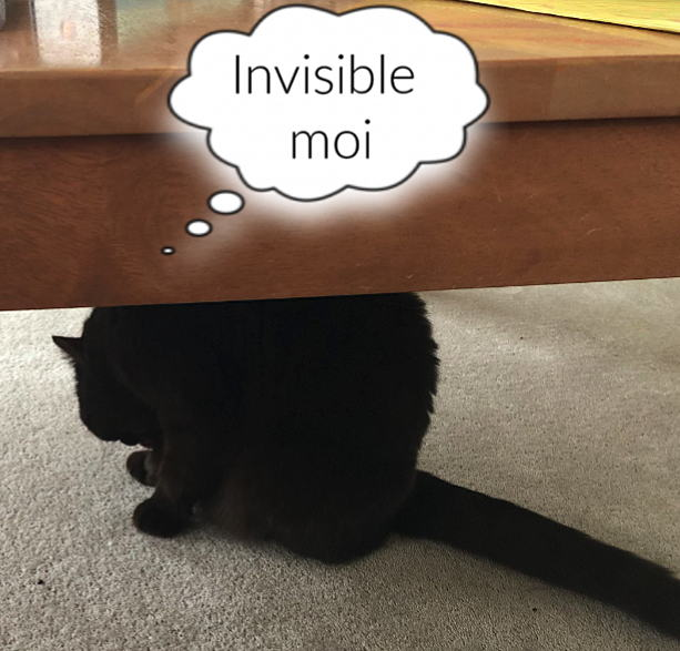 invisible-in-middle-age