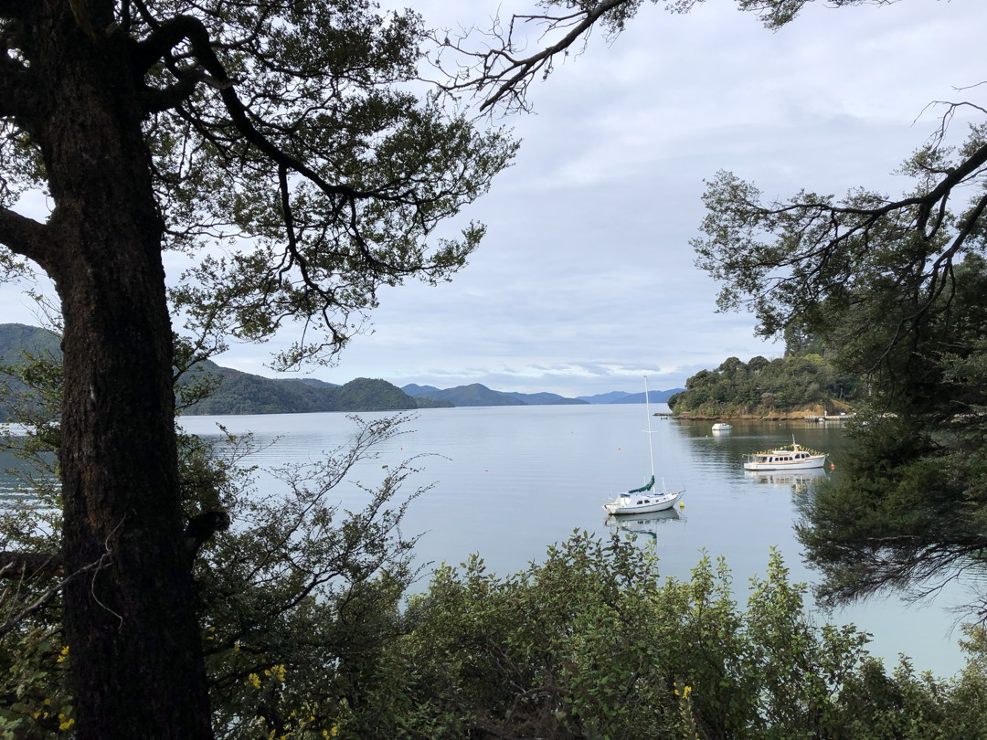 View of Marlborough Sounds near Anakiwa
