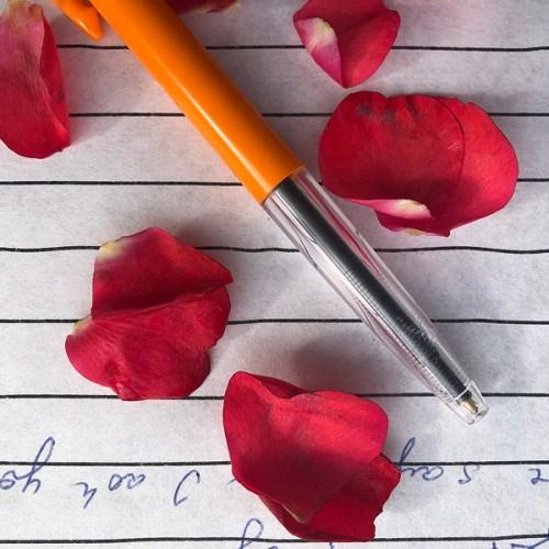 pen, rose petals, notebook