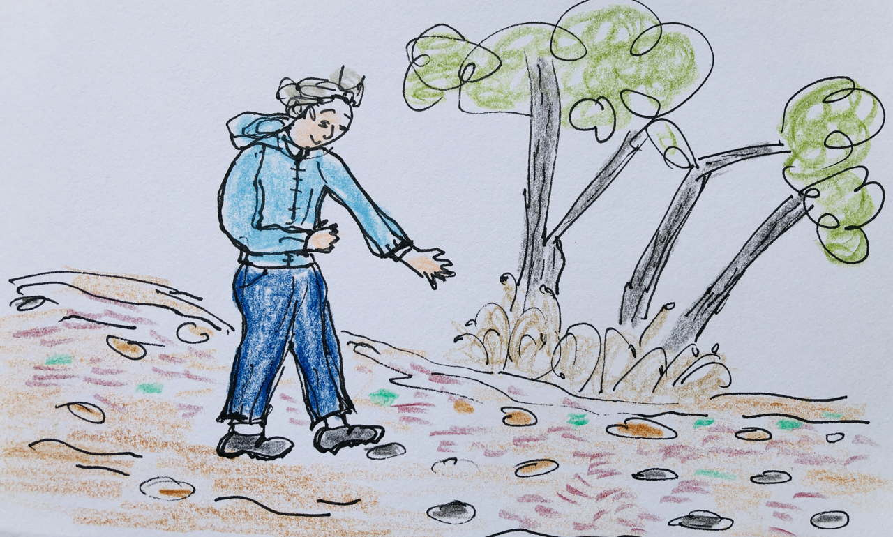 drawing of woman admiring dead grass by a pathway