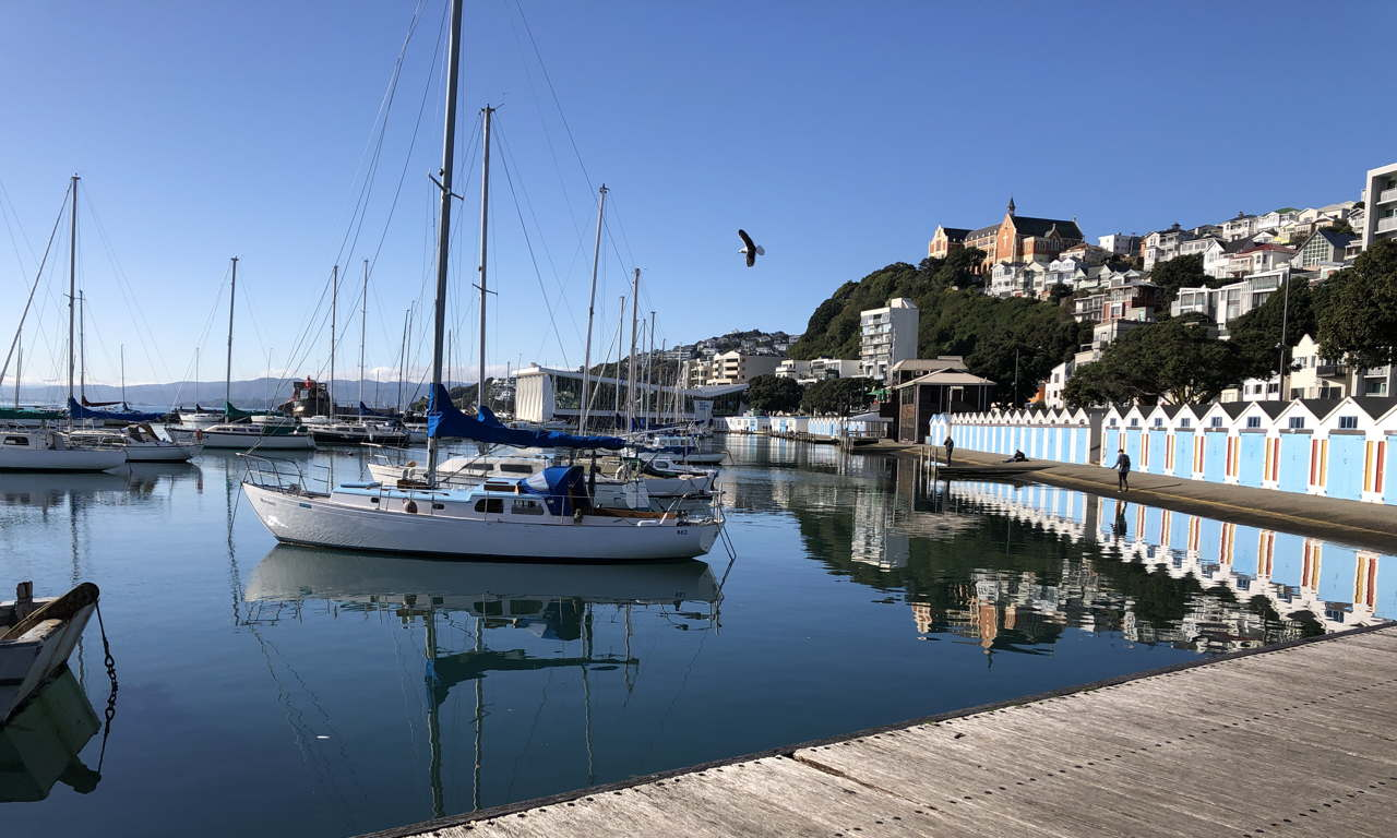 Photo of yachts, boat sheds, homes on hills in the sunshine