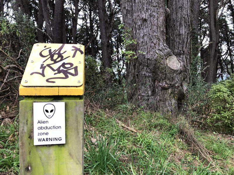 Alien abduction zone WARNING among trees