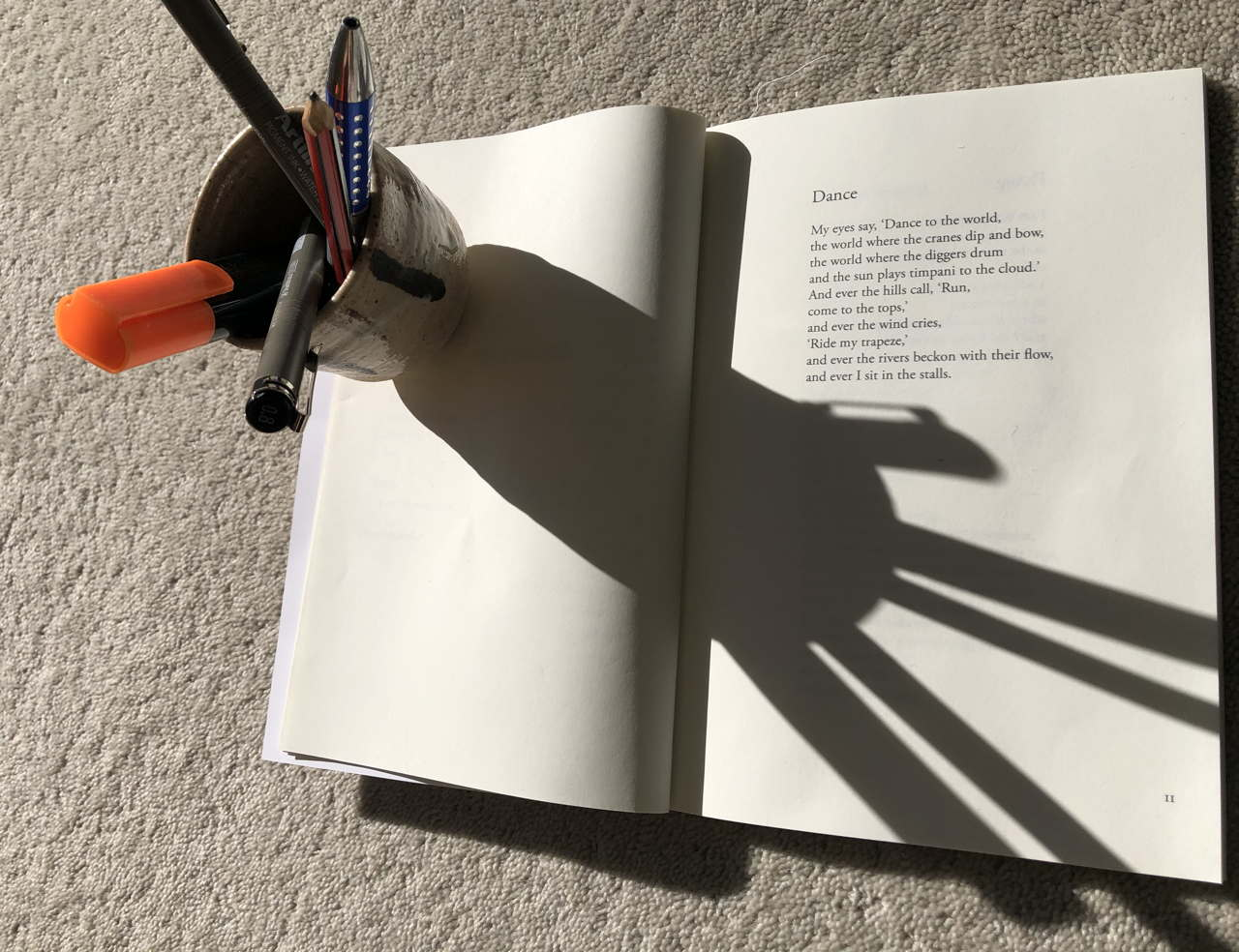 Photo of a cup of pens on a poetry book.