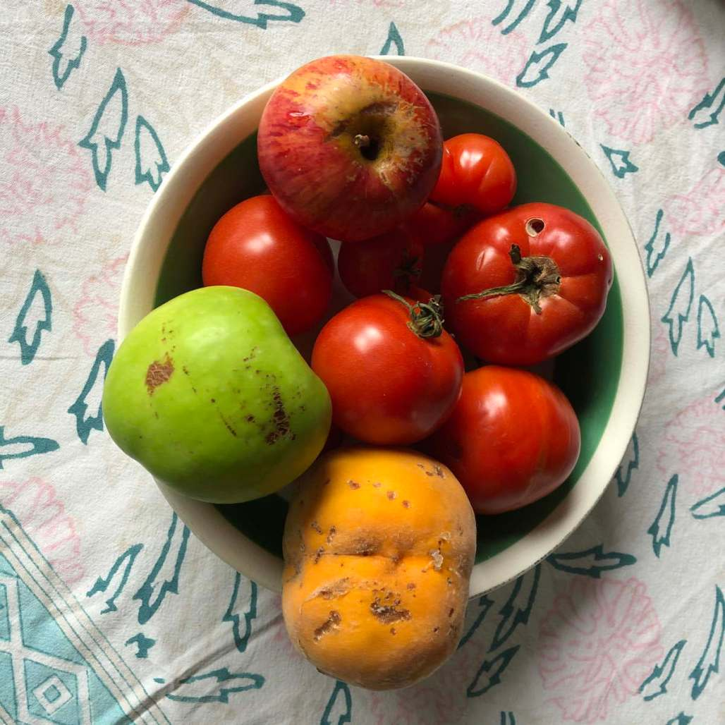 Photo of fruit and tomatoes with scarred skin and nsect holesi