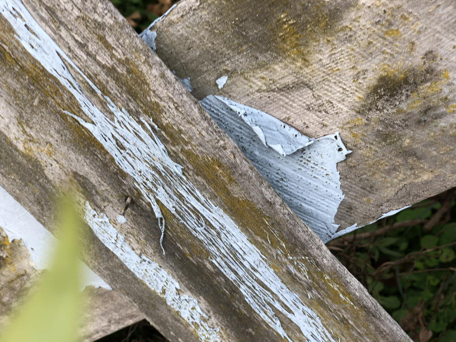 Annoying photo of an old fence with peeling paint and out-of-focus leaf