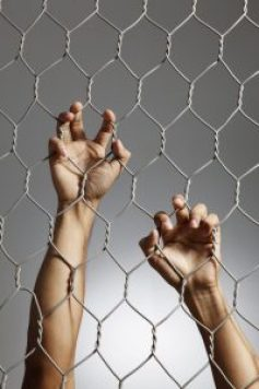 Cage, trapped