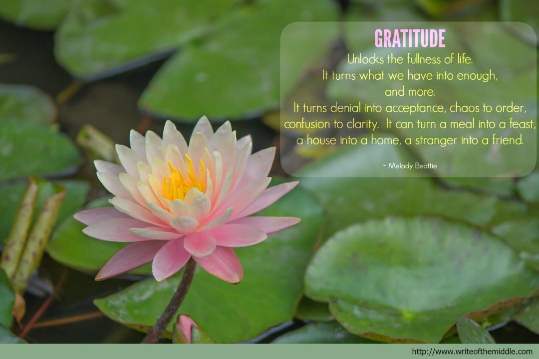 Gratitude, Quote, Lotus Flower