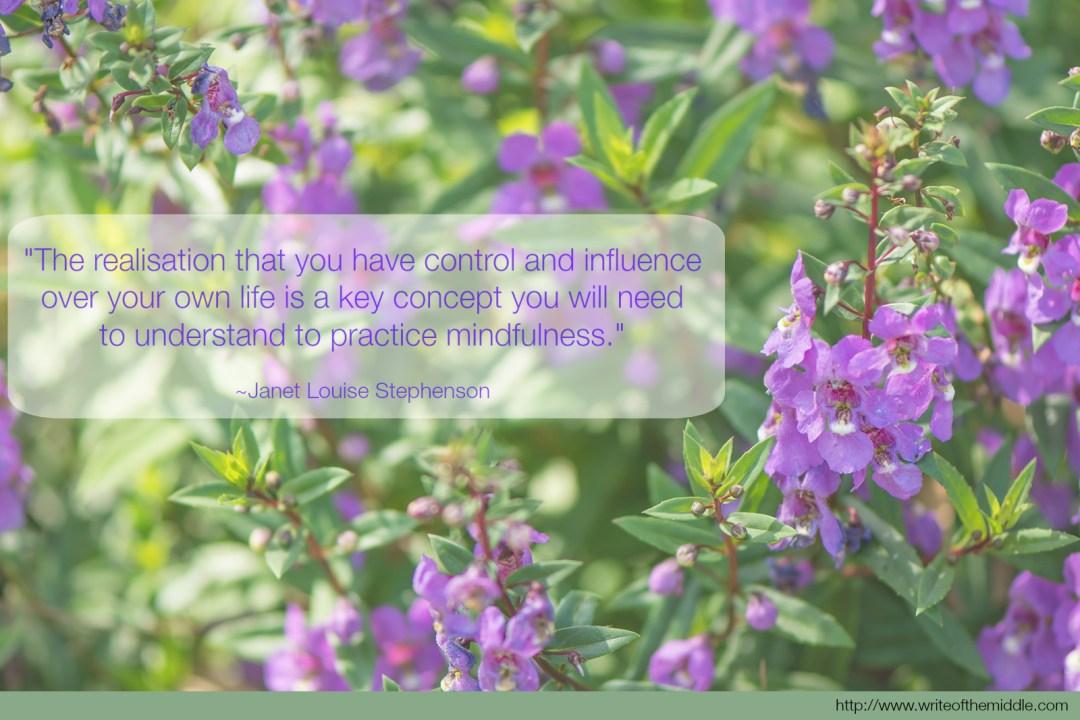 Mindfulnesss Quote - Stephenson