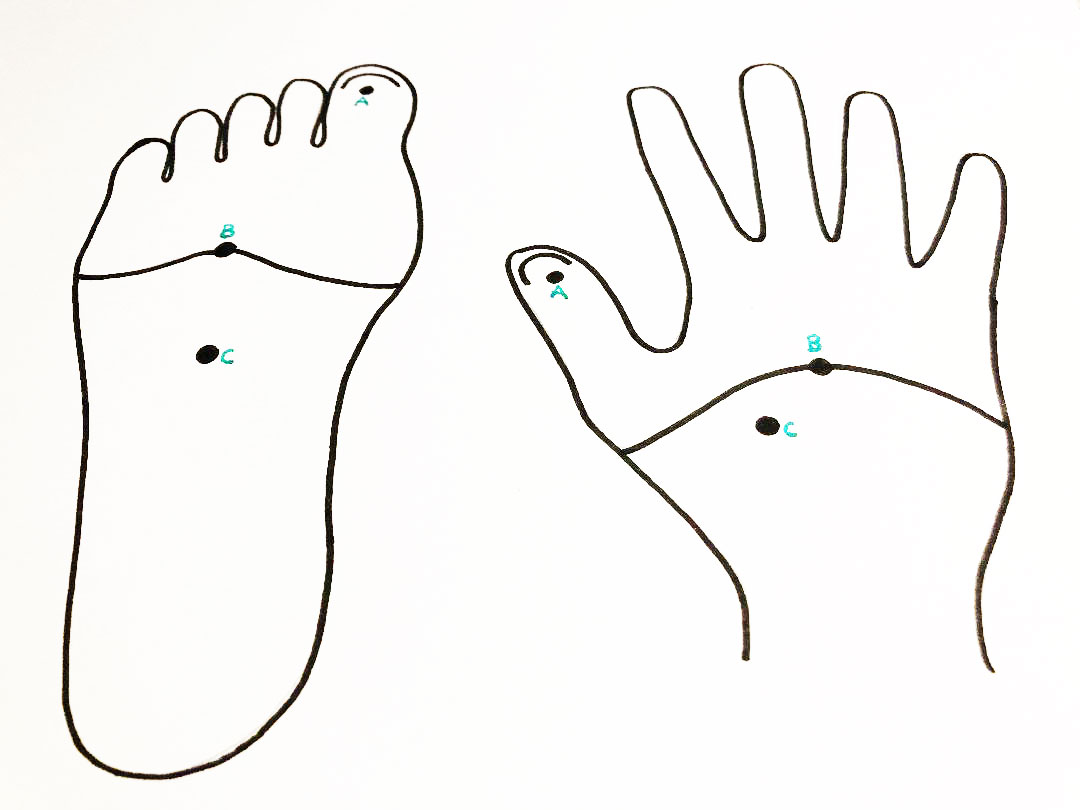 Reflexology Points on Hands and Feet