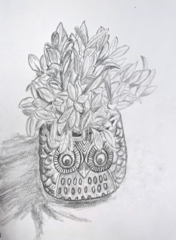 I drew a fake plant in an owl pot. I love owls!