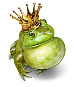Frog Prince Communication