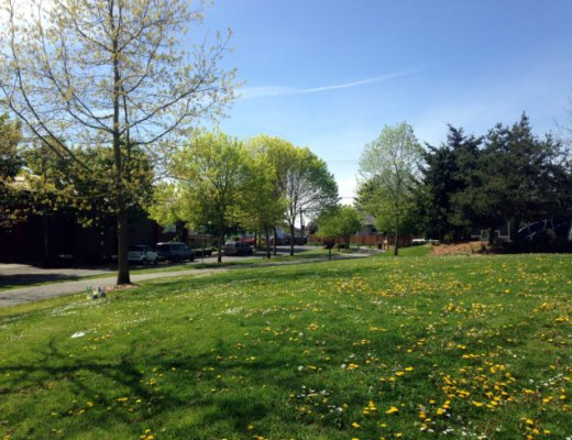 Spring Adventure - A fairytale walk