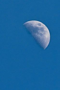 photo credit: Daylight Moon via photopin (license)