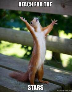 Squirrel reaching up