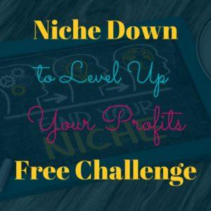 niche in to level up profits challenge