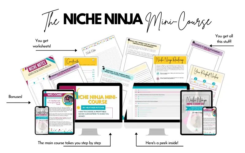Niche Ninja Mini-Course full mockup of course