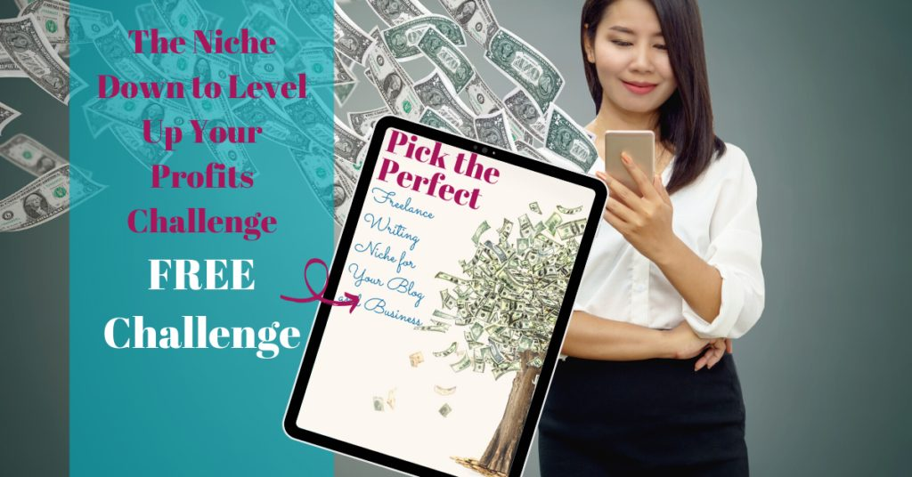 niche down to level up your profits challenge