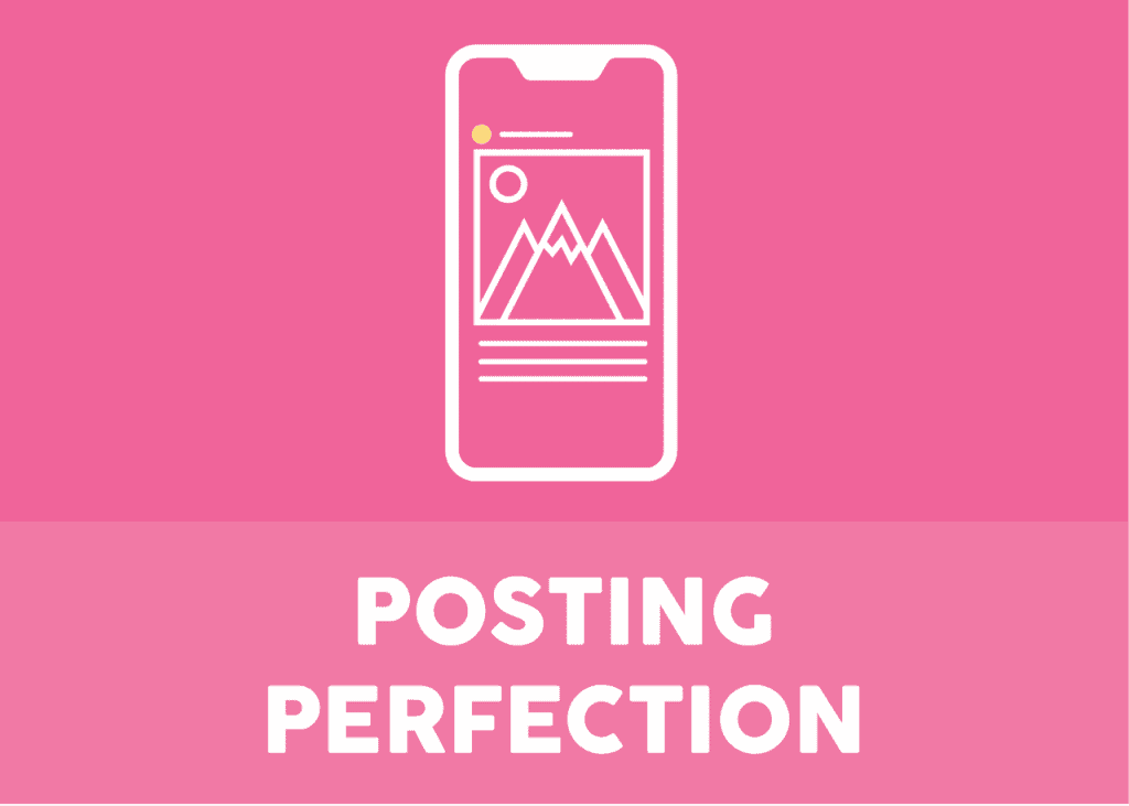 Posting Perfection Course