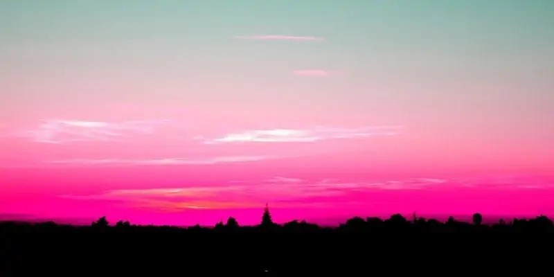 treetops with a pink sky and clouds above it