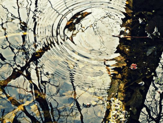 Revision: The Ripple Effect