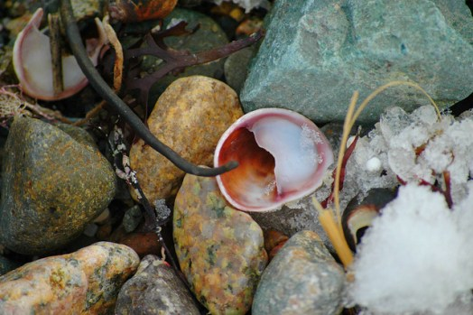 Confessions of a Beachcombing Writer