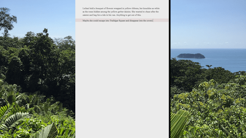 Full screen composition mode in Scrivener