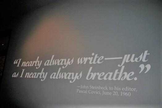 This Writing Life . . . .