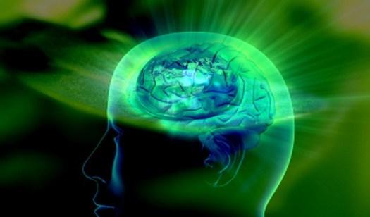 Workout Writer: Mind to Muscle Focus (Self-Awareness)