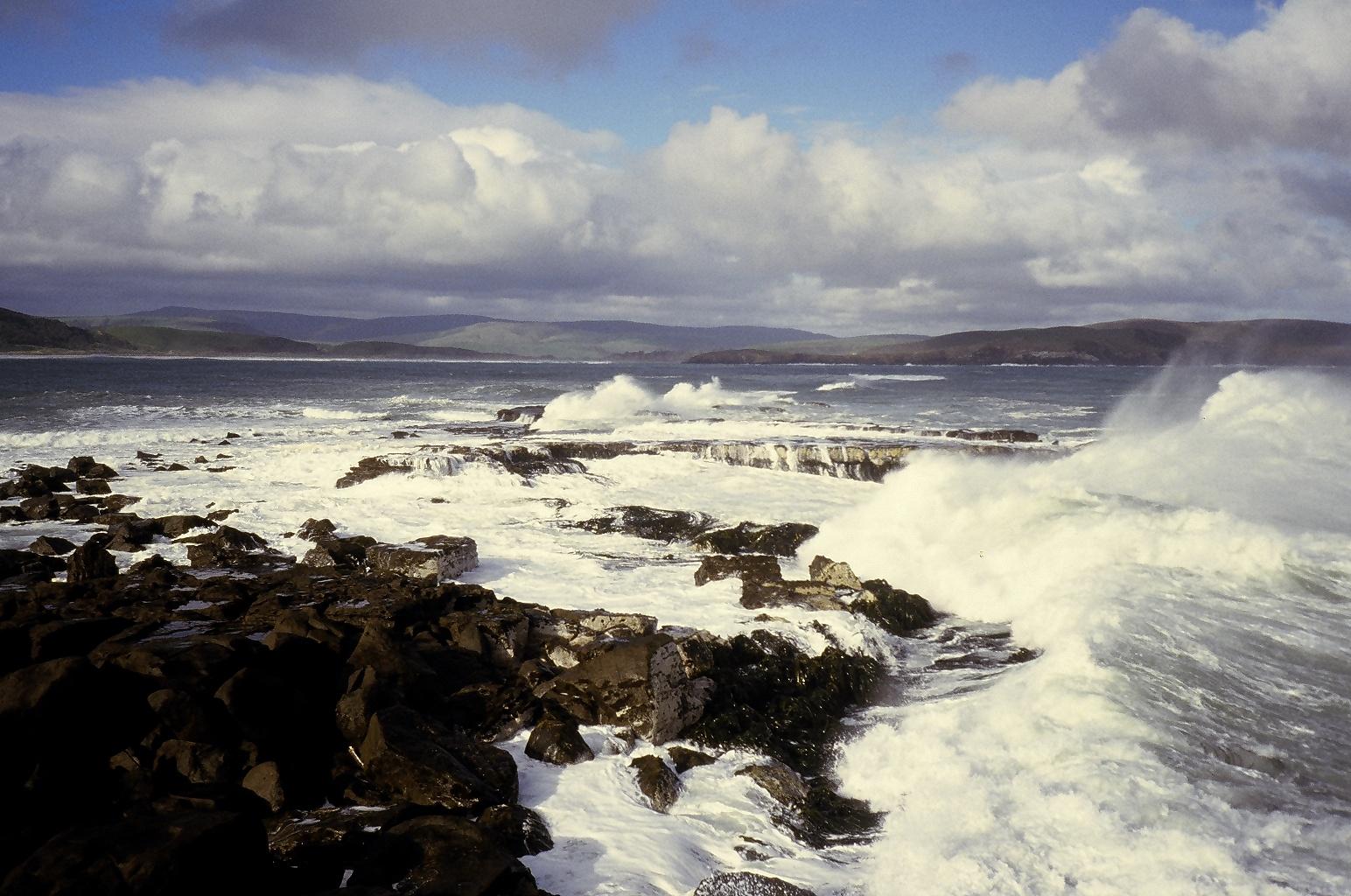 The wild coastline at Curio Bay